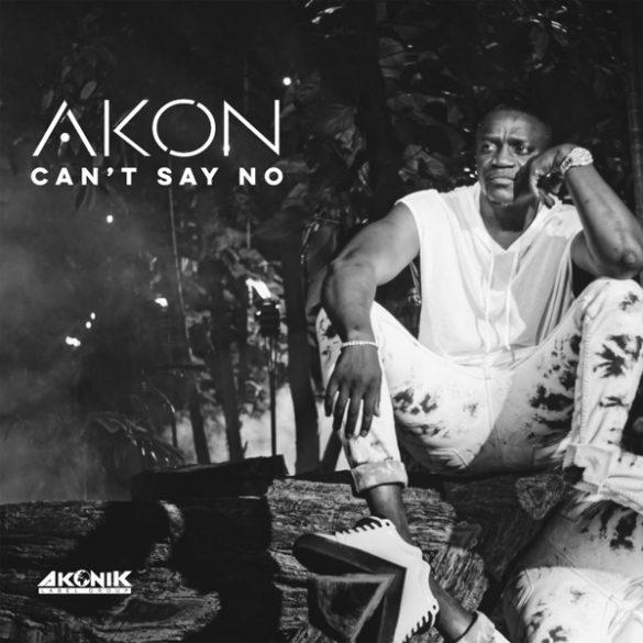 [Music] Akon - Can't Say No