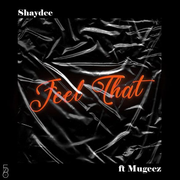 [Music] Shaydee ft. Mugeez - Feel That