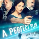 DOWNLOAD: A Perfect Plan - 2020 Hollywood Movie